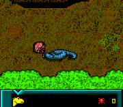 Play Dinosaur Online