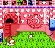 Play Hamster Paradise Online