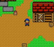 Play Harvest Moon 3 GBC Online