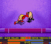 Play Prince Naseem Boxing Online