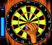 Play Pro Darts Online